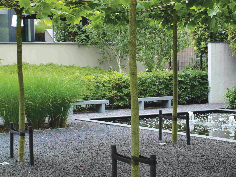 Bomen en fruitbomen voor uw tuin tuincentrum roegiers for Mooie tuinen kijken